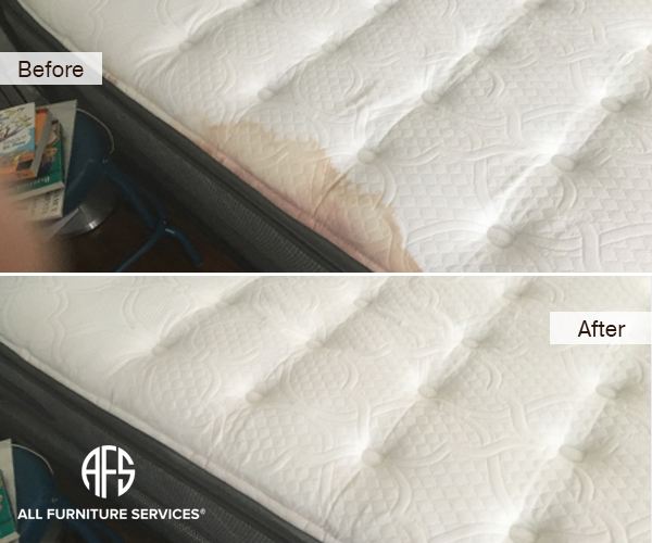 Mattress Upholstery Urine Blood Wine Stain Removal Extraction Cleaning
