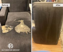 upholstery extraction cleaning vomit body fluid pet stain removal